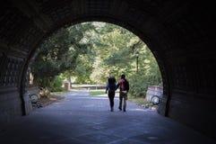 Tunnel de parc Photos stock