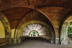 Tunnel de parc de perspective Photo stock