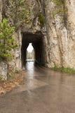 Tunnel degli aghi fotografie stock
