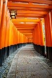 Tunnel dei portoni Fotografia Stock