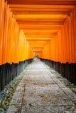 Tunnel dei portoni Fotografie Stock