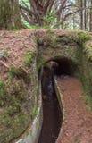 Tunnel del canale idrico di Levada Fotografie Stock Libere da Diritti