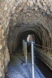 Tunnel del fiume di Borosa Fotografia Stock Libera da Diritti