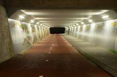 Tunnel della bicicletta alla notte Immagine Stock Libera da Diritti