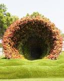 Tunnel della flora Fotografia Stock Libera da Diritti