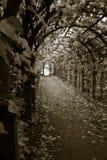 Tunnel der Sorge lizenzfreie stockfotografie
