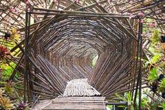 Tunnel di bambù nel giardino. Immagine Stock