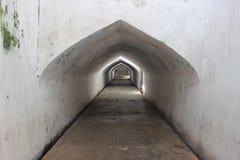 Tunnel di irrigazione Fotografia Stock Libera da Diritti