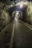 Tunnel di pietra Fotografia Stock Libera da Diritti
