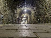 Tunnel di pietra Immagine Stock