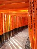 Tunnel di Torii rosso a Fushimi Inari Fotografia Stock