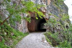 Tunnel dug Stock Image