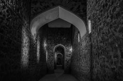 Tunnel en Amer Fort Image stock