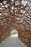 Tunnel en bambou Images libres de droits