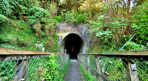Tunnel Entrance. The entrance to an old mining tunnel Stock Photography