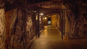Tunnel för dammsugarefördämning Royaltyfria Bilder