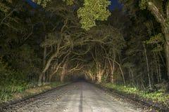 Tunnel fantasmagorique rampant de chêne en île d'Edisto, la Caroline du Sud photographie stock