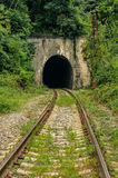 Tunnel ferroviario abbandonato Immagini Stock Libere da Diritti