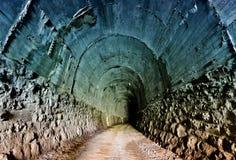 Tunnel ferroviario abbandonato Fotografie Stock