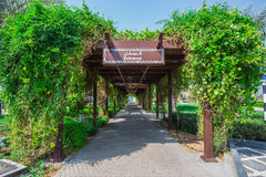 The tunnel of greenery in Stock Photography