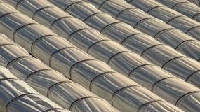 Tunnel greenhouses for intensive agriculture Stock Photos
