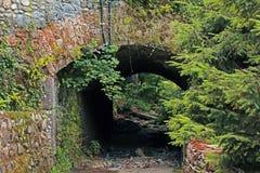 Tunnel historique avec la végétation Image libre de droits