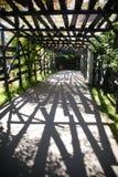 Tunnel i axeln av träbräden Royaltyfri Bild