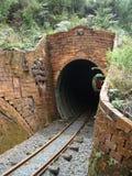 Tunnel im Dschungel Lizenzfreies Stockfoto