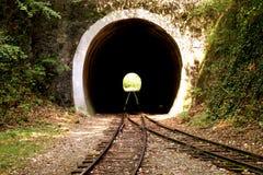 Tunnel im forrest Stockfoto