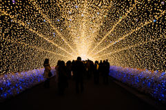 The tunnel of light in Nabana no Sato garden at night in winter, Stock Photography