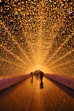Tunnel of Lights Royalty Free Stock Image