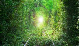 Tunnel of love in Eastern Europe. Railway and forest with abstract sun at the end Stock Image