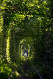 Tunnel of Love Stock Image