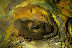 Tunnel med det gamla villebrådet Royaltyfria Bilder