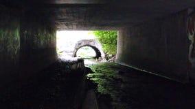 Tunnel misterioso scuro con acqua stock footage