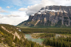 Tunnel mountain hoodoos Stock Image