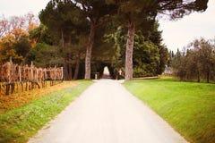 Tunnel naturel constitué par des arbres Images libres de droits