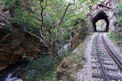 Tunnel och flod royaltyfri bild