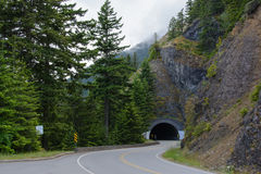 Tunnel in the Olympic national park in Washington State Royalty Free Stock Photo