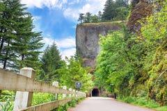 Tunnel par la gorge d'Oneonta photos stock