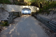 Tunnel Park Holland Royalty Free Stock Photography