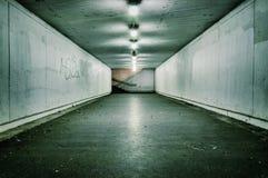 Tunnel passionné de cru Images libres de droits