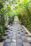 Tunnel pathway covered with green leaves Stock Photo