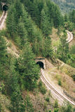 Tunnel on the railway track Stock Images