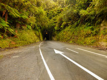 Tunnel Road Rainforest. Tunnel road in rainforest. New Zealand Stock Image