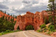 Tunnel rosso della strada dell'arco sul modo a Bryce Canyon Fotografia Stock