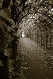 Tunnel of sorrow Royalty Free Stock Photography