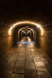 Tunnel souterrain Photos stock