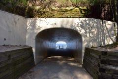 Tunnel-Strand-Park in Holland stockfotos
