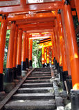 Tunnel of thousand torii gates in Fushimi Inari Shrine, Kyoto Royalty Free Stock Image